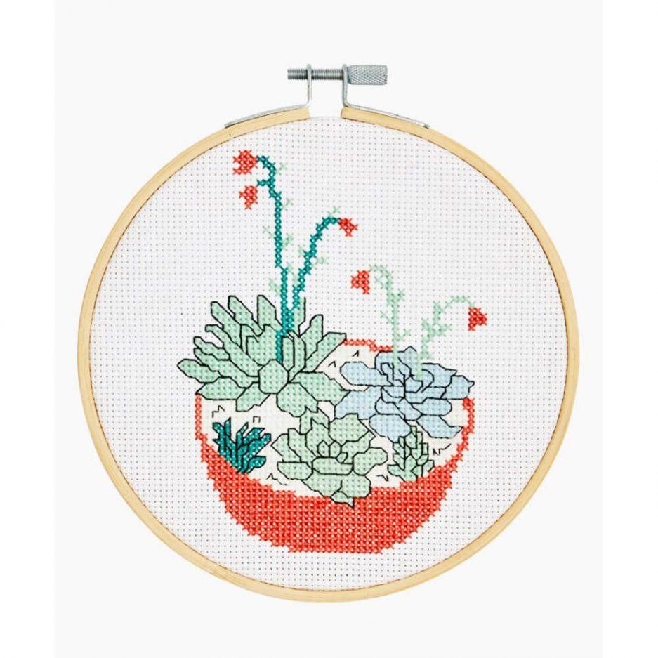 Borduurpakket succulents - vetplanten