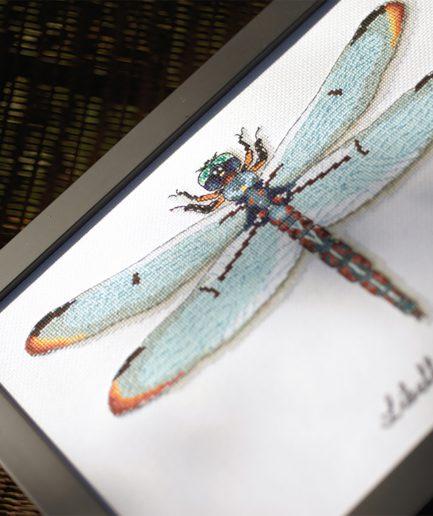 Vervaco borduurpakket libelle