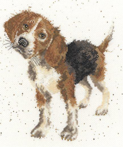 borduurpakket beagle