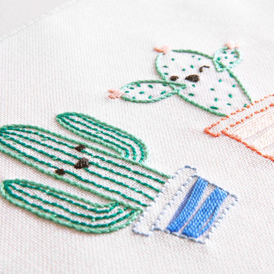 cactus borduren met borduurpakket