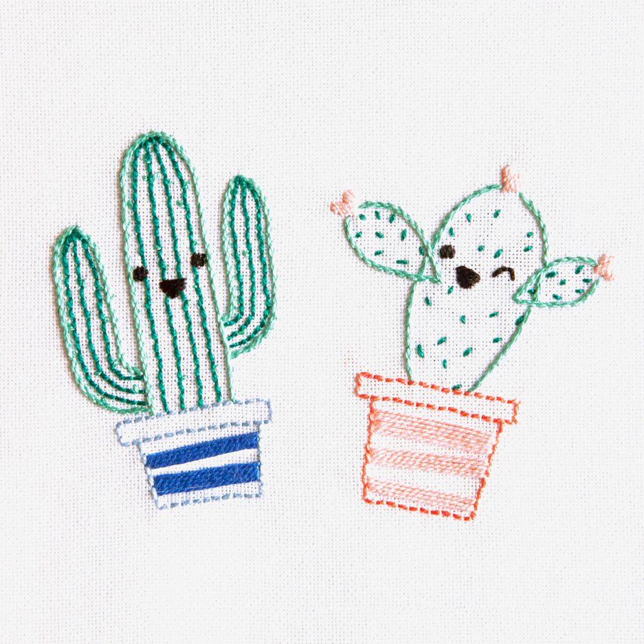 dmc borduurpakket cactus