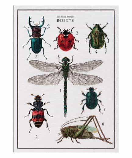 borduurpakket history of insects thea gouverneur aida