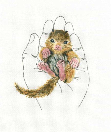 borduurpakket eekhoorn in handen RTO