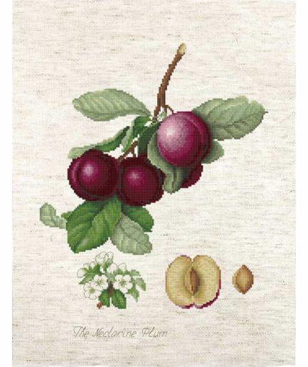 the nectarine plum borduurpakket kruissteek
