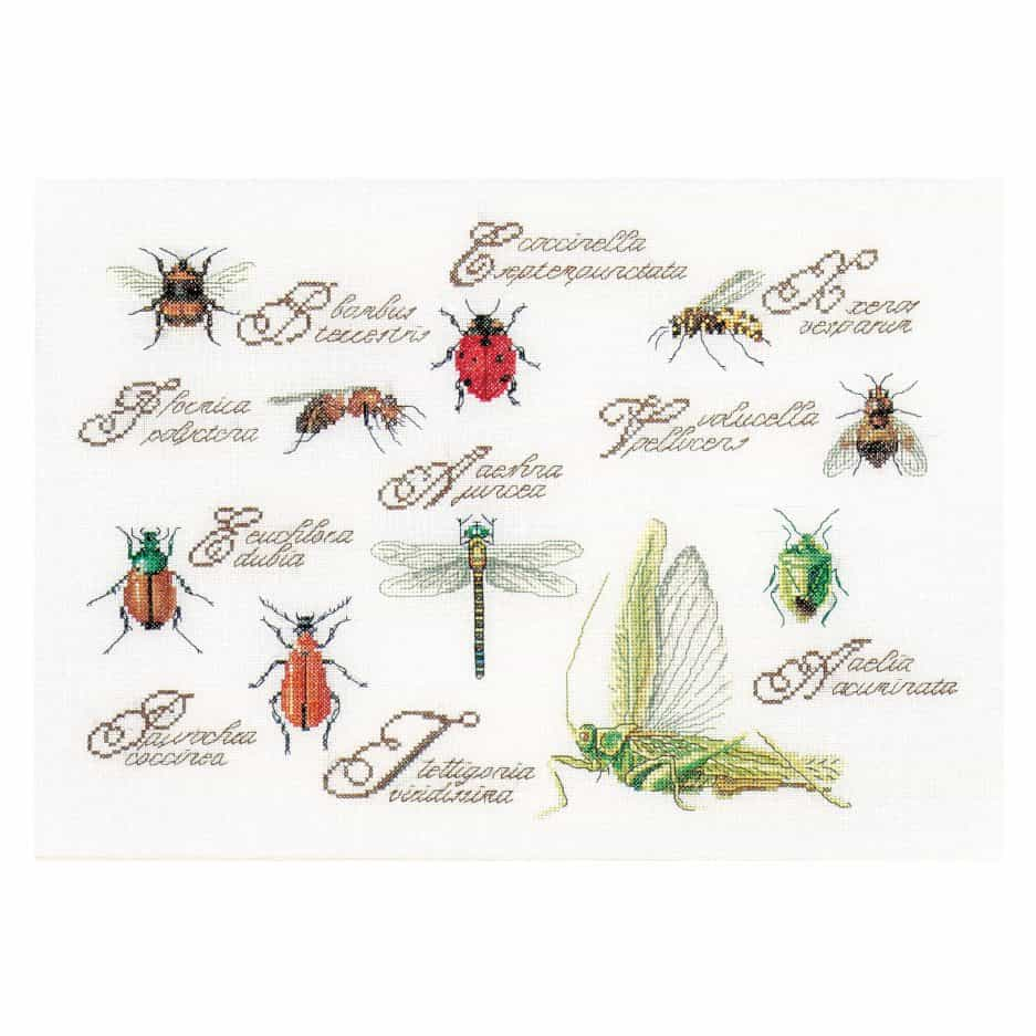 Thea Gouverneur insect panel