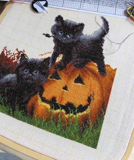 Halloween borduurpakket zwarte kat pompoen