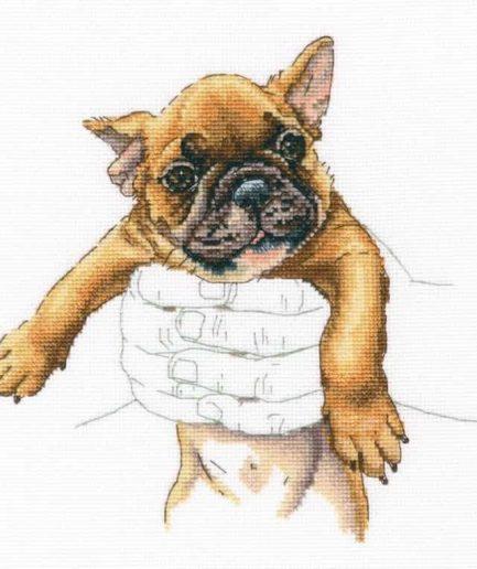 Borduurpakket puppy french bulldog