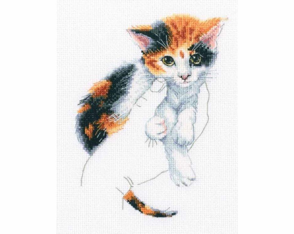 Kitten borduurpakket